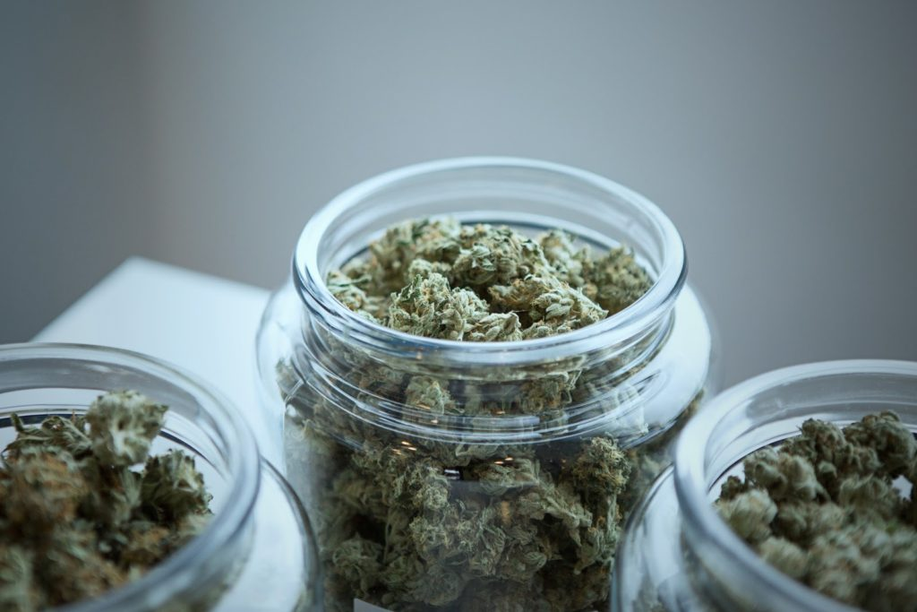 best-sativa-strains