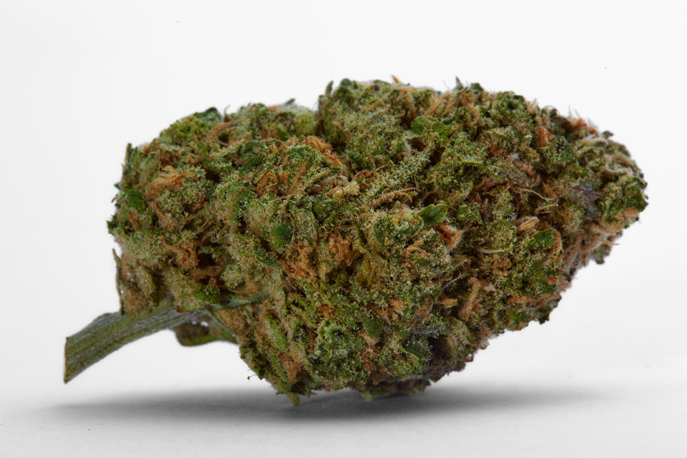 best-hybrid-strains